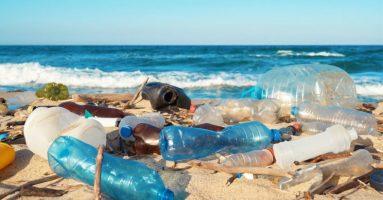 Plastic into Hydrogen – Microwave It