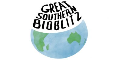 Great Southern Bioblitz 22 to 25 October